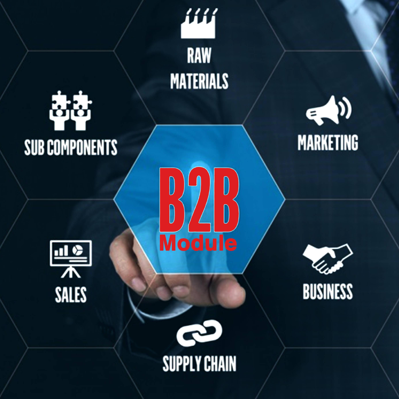 b2b-module